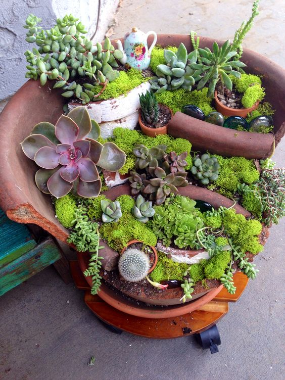 broken pot fairy garden pinterest 2