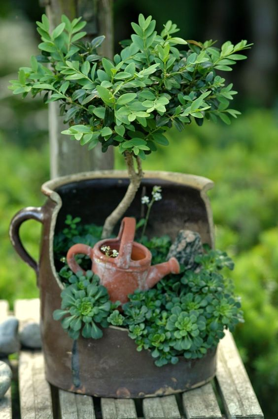broken pot fairy garden pinterest 9
