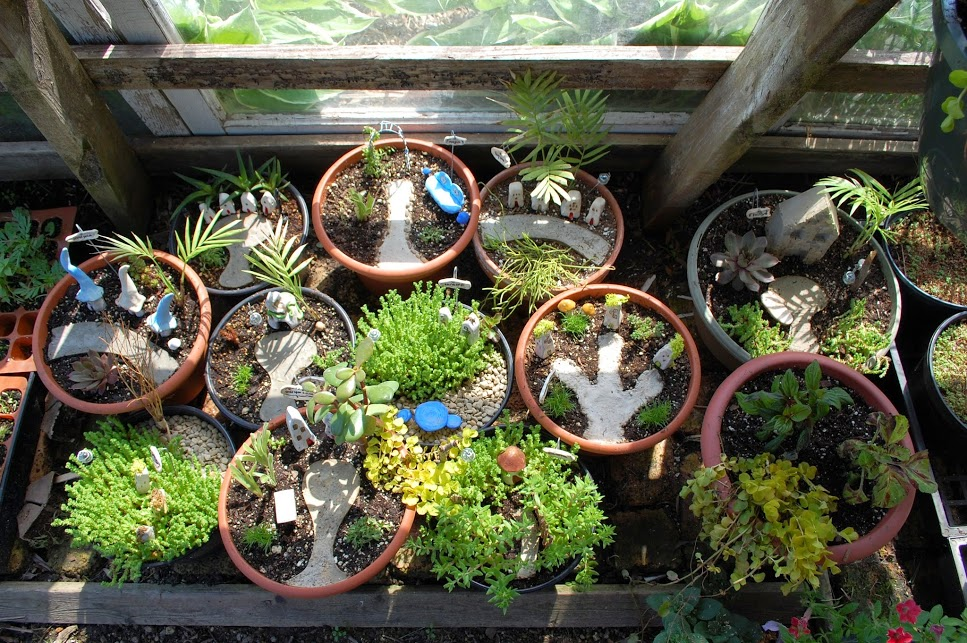 fairy houses in the greenhouse