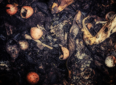 how-to-compost-without-a-bin