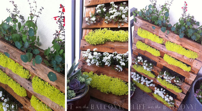 pallet garden ideas -flowers-lifeonthebalcony