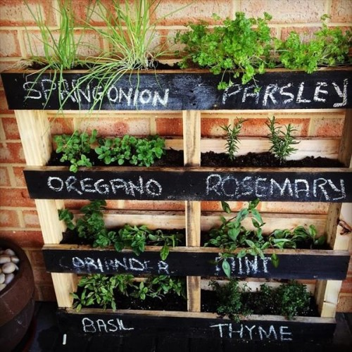 pallet garden ideas for herbs-99pallets