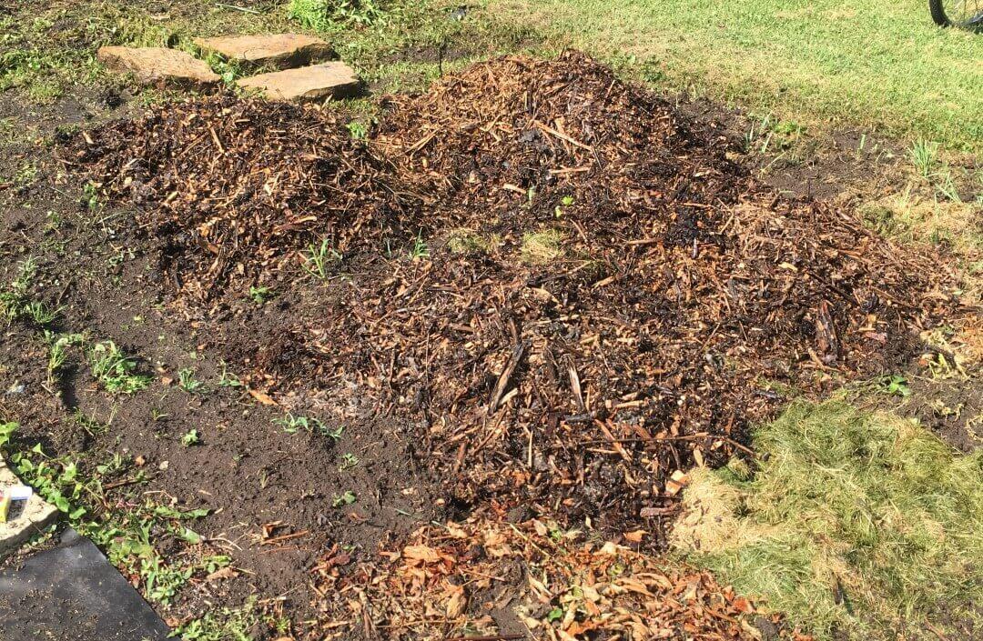 Added Woodchips as Mulch 2019