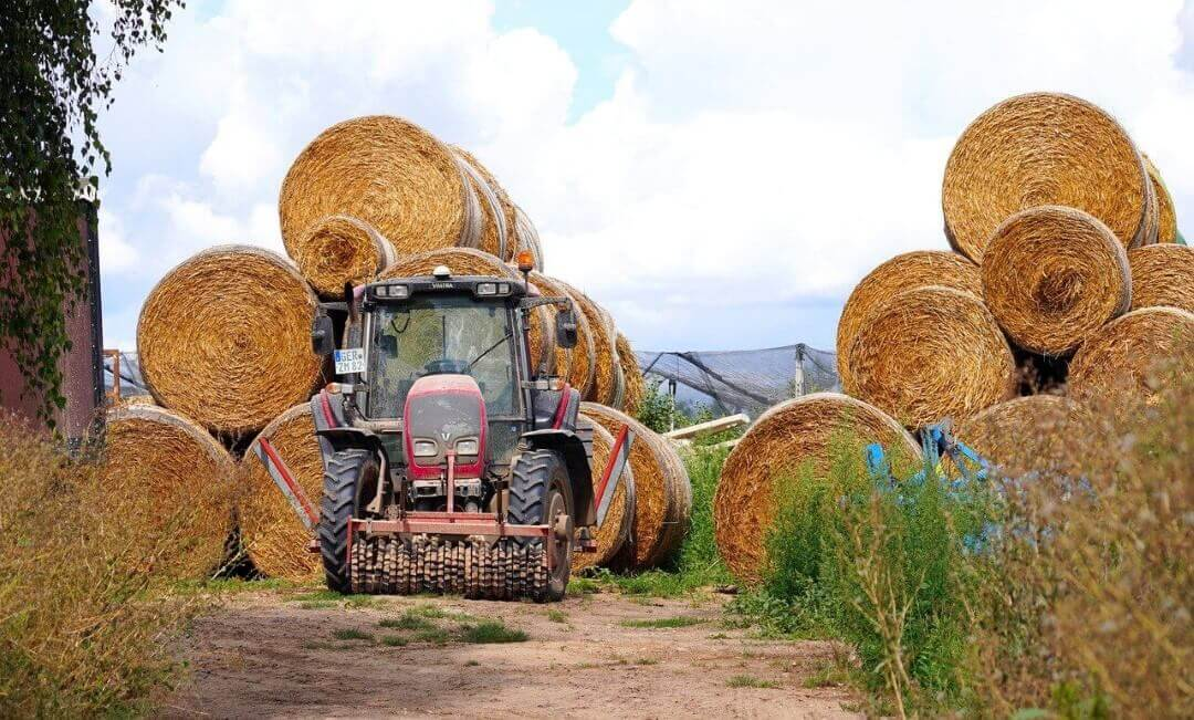 Hay Bales on the Farm
