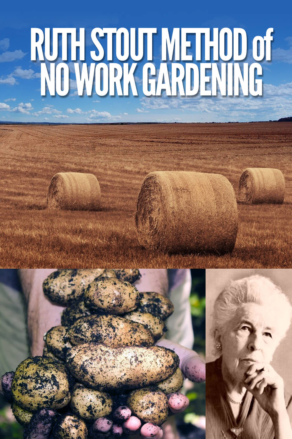 Ruth Stout Method of No Work Gardening by Roots Nursery