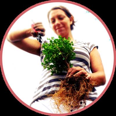 Trisha at Roots Nursery
