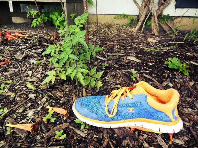garden soil preparation fail