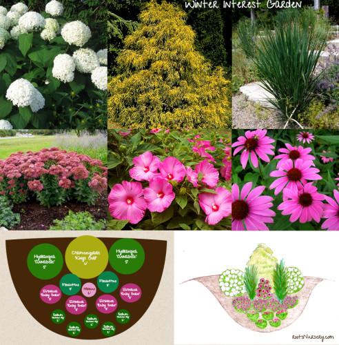 winter interest garden design